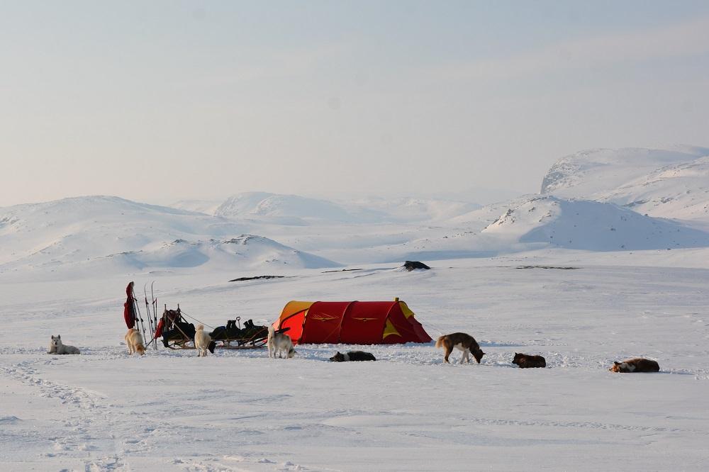Teltet – Langsomt på Svalbard